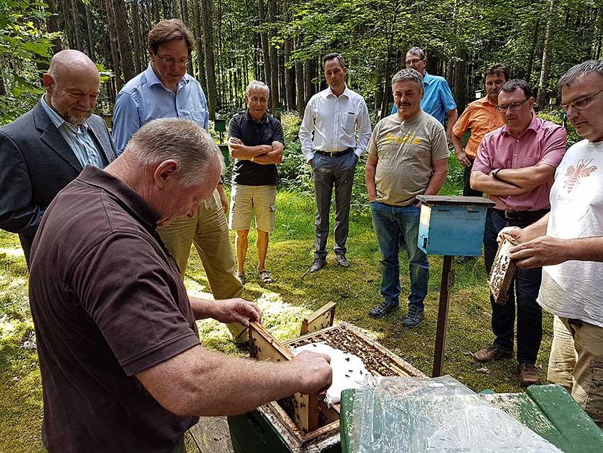 Mitglieder des Arbeitskreises Umwelt und Landwirtschaft der CDU-Landtagsfraktion beim Vor-Ort-Termin beim Imkerverein Fraureuth e.v. Auf der Tagesordnung stand die Besichtigung der Belegstelle Fürstenstuhl.