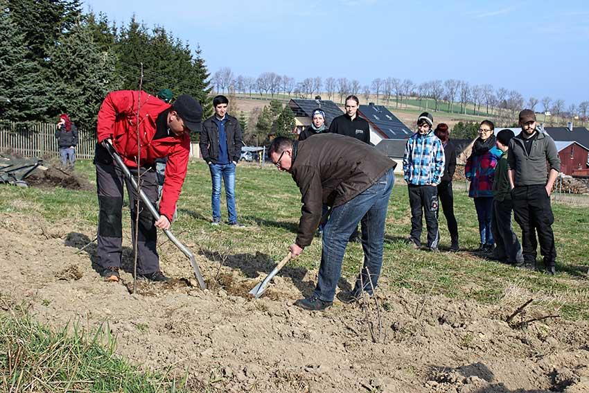 Ronny Wähner beim Pflanzen in Crottendorf.