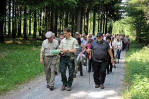 Waldspaziergang mit MdL Ronny Wähner und MdL Alexander Krauß im Neudorfer Forstbezirk.