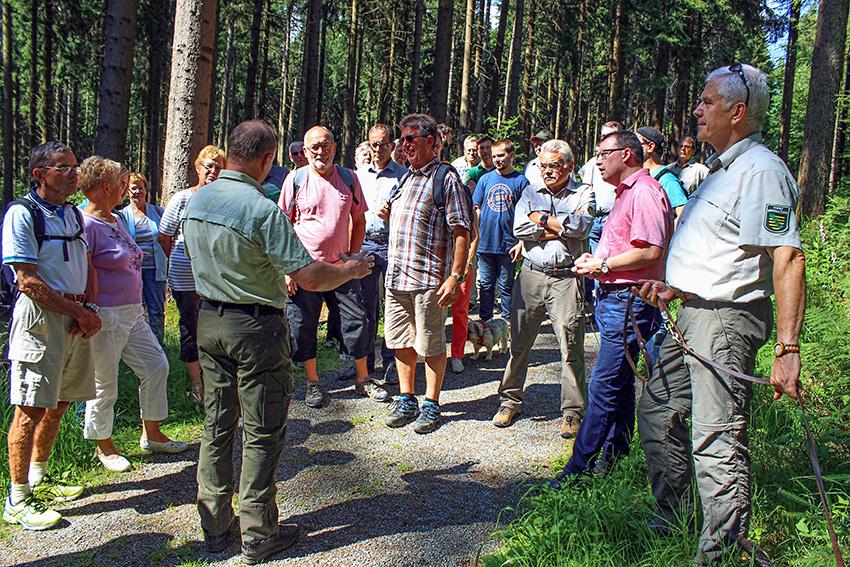 Waldspaziergang in Ehrenfriedersdorf.